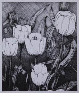 5 witte tulpen